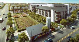 Agrihood central amenities, rendering by Steinberg Hart
