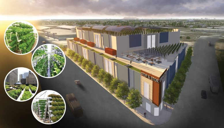 2285 Jerrold Avenue, rendering with images of sample designs features across the WeFarm urban agriculture complex, rendering by Rana Creek